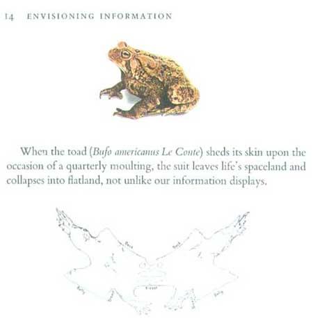EnvisioningInformation