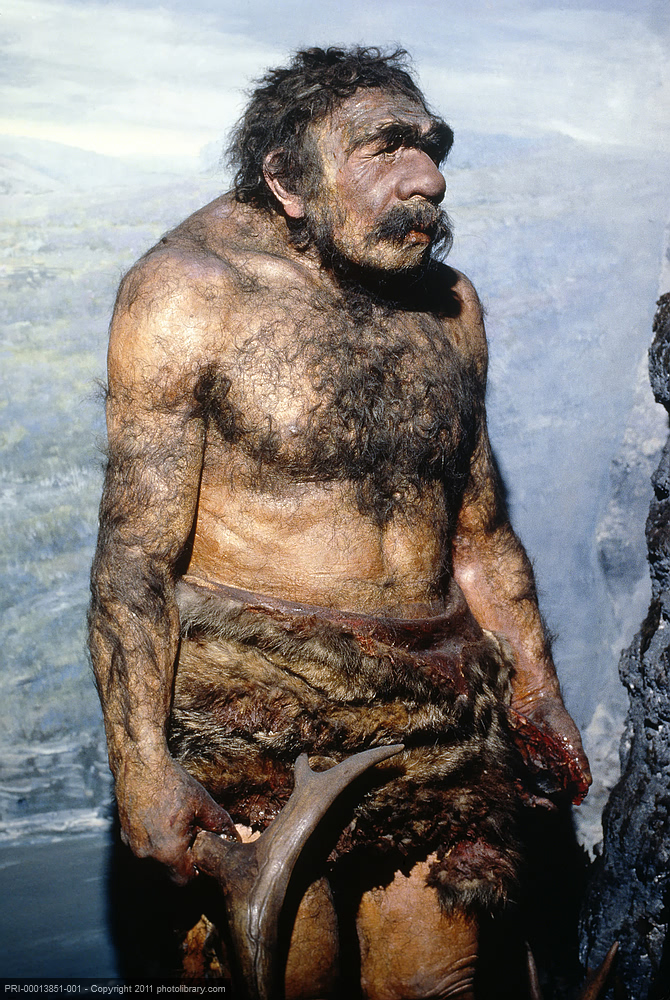 Modern dress clothes for a woman - My Neanderthal Fascination Peripatetic Sloth